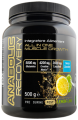 Anabolic Recovery gr500